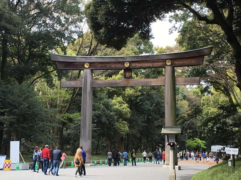 Big Torii gate at Meiji Shrine
