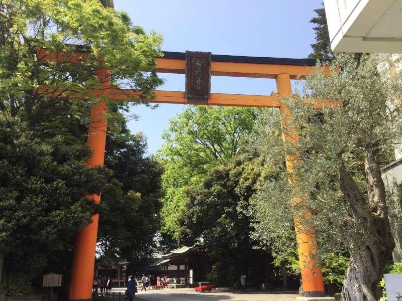 Big Torii Gate of Hikawa Shrine