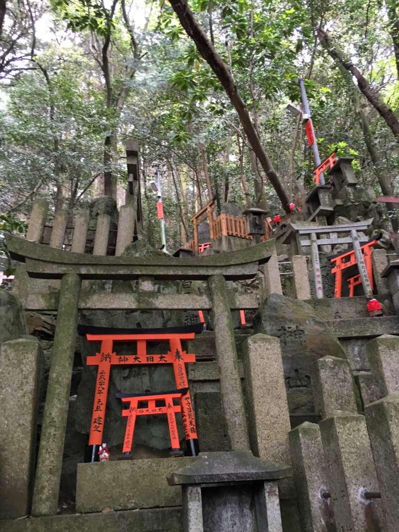 mysterious scene around the sacred huge stone