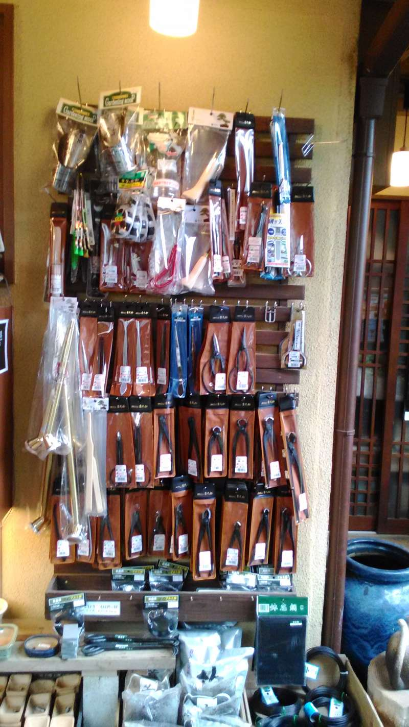 you can buy some tools for Bonsai.