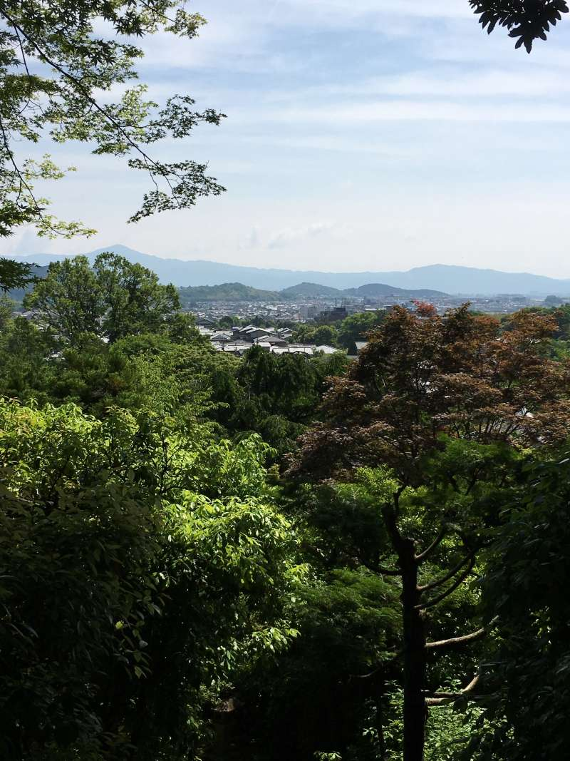 panoramic view of Kyoto city from the top of Jojakko-ji Temple