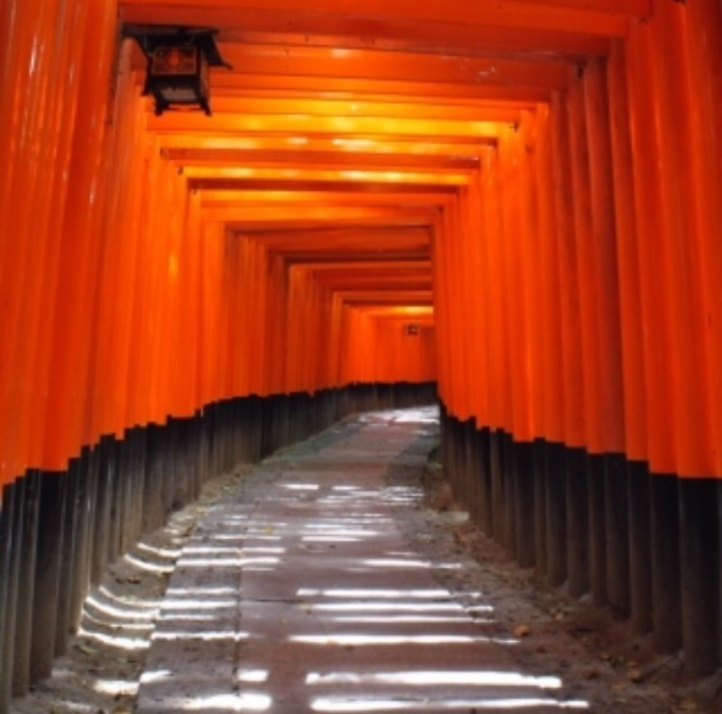 the tunnel of the 1,000  Torii gates, just like the one to the another world...