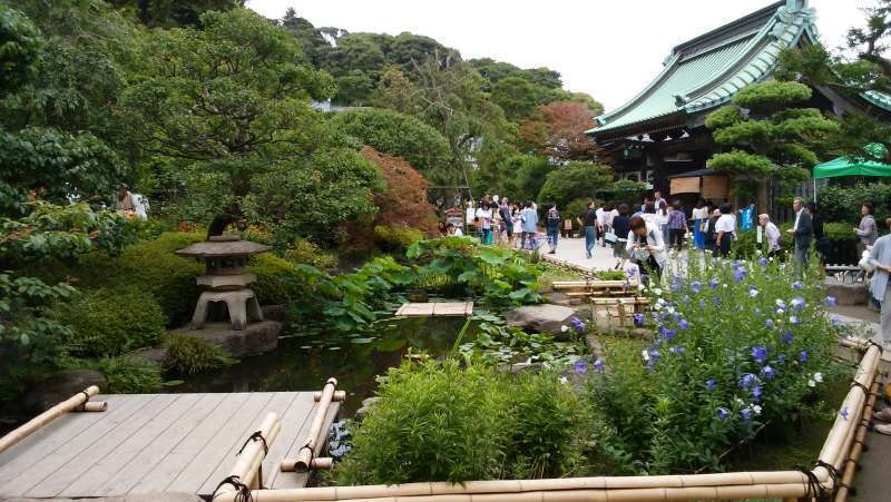 Hasedera Temple: it is famous for Great Kannon statue, and has a beautiful garden with various flowers in each season.