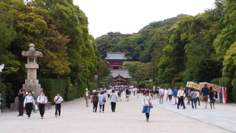 Tsurugaokahachimangu  Shrine: this shrine used to be a center of Kamakura Shogunate.