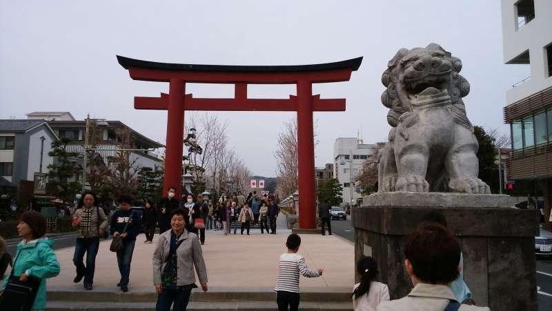 The large Torii gate and Komainu guardian dog statue of Tsurugaokahachimangu Shrine. This gate is a sacred entrance of the approach to Tsurugaokahachimangu Shrine.