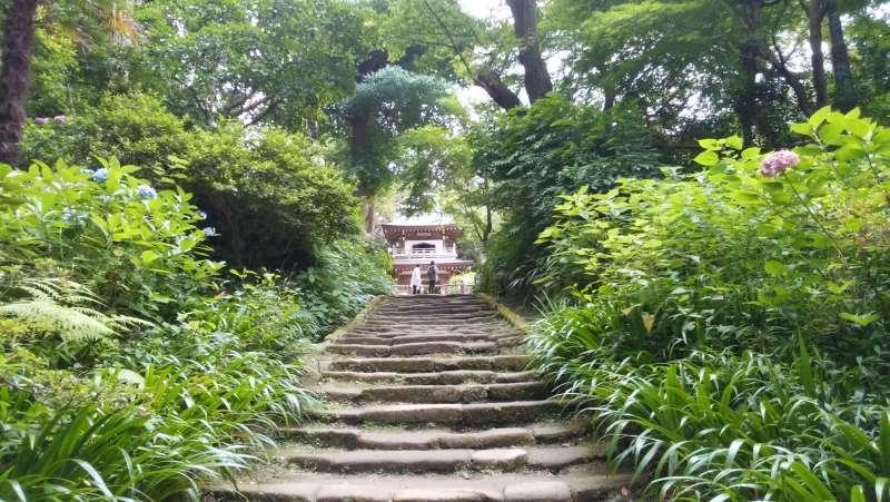 Jochiji Temple is located in the tranquil hillside in Kita-Kamakura. It is one of the Five Great Zen Temples of Kamakura.