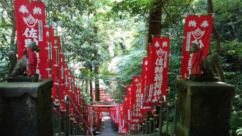 Sasukeinarijinnja Shrine: worshipers offer many torii gates and flags to the god for their wish.